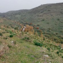 ארץ הגליל - הירדן ההררי
